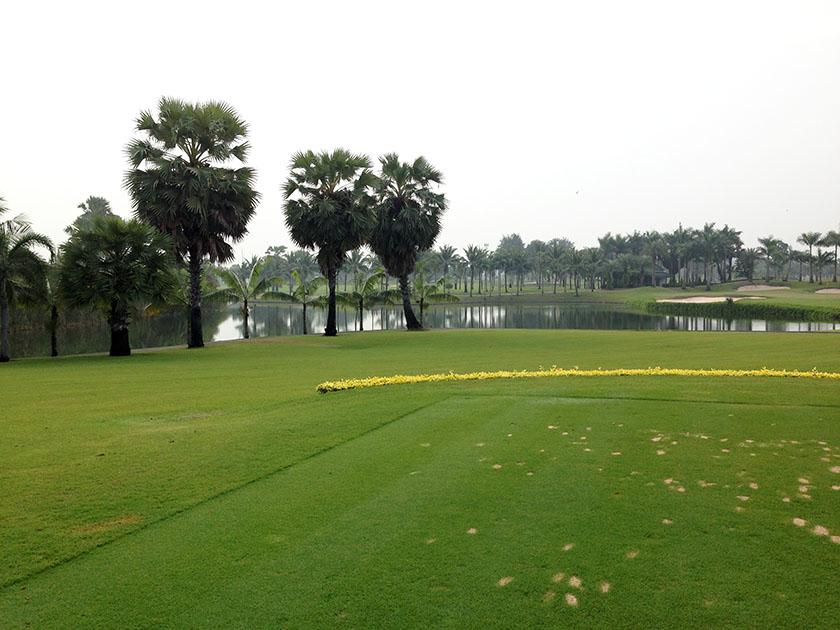 スワン ゴルフ&カントリークラブ 南の国に来たって感じのする風景
