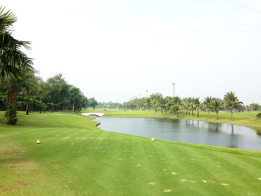 スワン ゴルフ&カントリークラブ ヤシの木と池ね