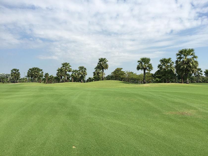 スワン ゴルフ&カントリークラブ 1番のフェアウェイ