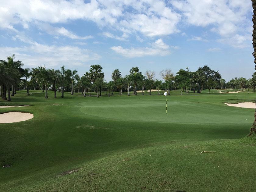 スワン ゴルフ&カントリークラブ うねっているグリーン