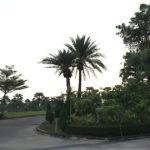 タイ・バンコク ゴルフ旅「スワンゴルフ&カントリークラブ」いつ行ってもきれいなコースでラウンド