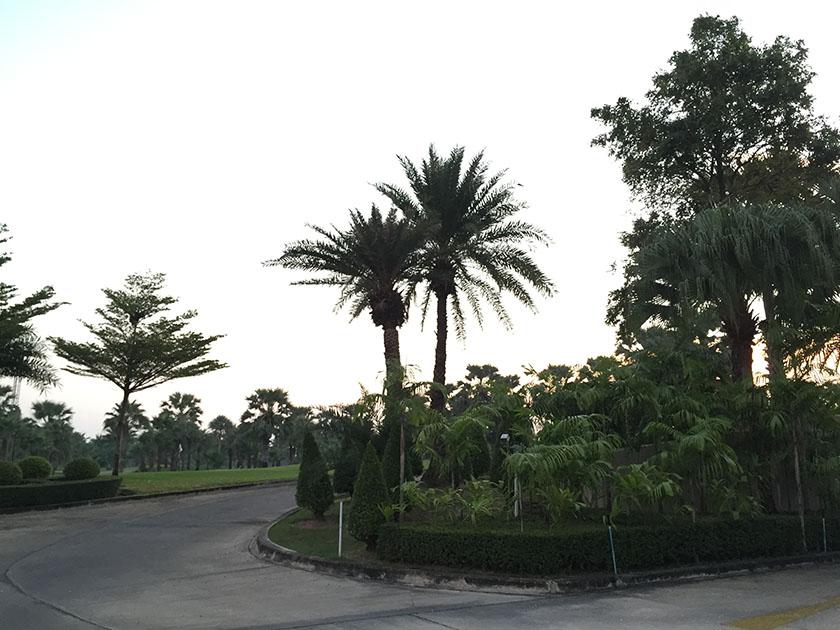 スワンゴルフ&カントリークラブ スタート前まだ薄暗い