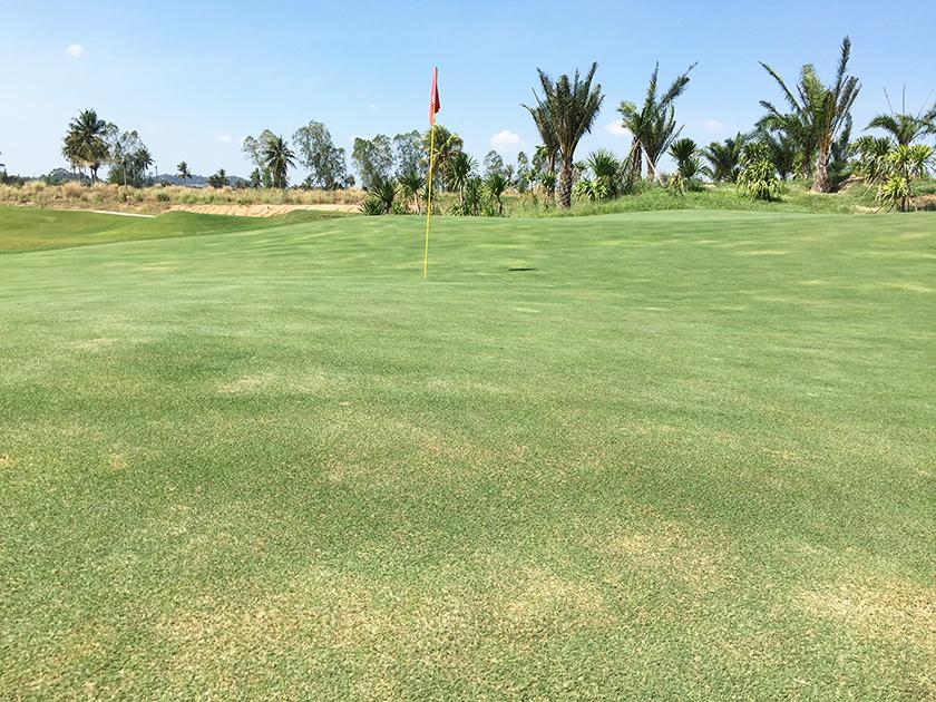 パリチャーゴルフリンクス 傾斜のきついグリーン