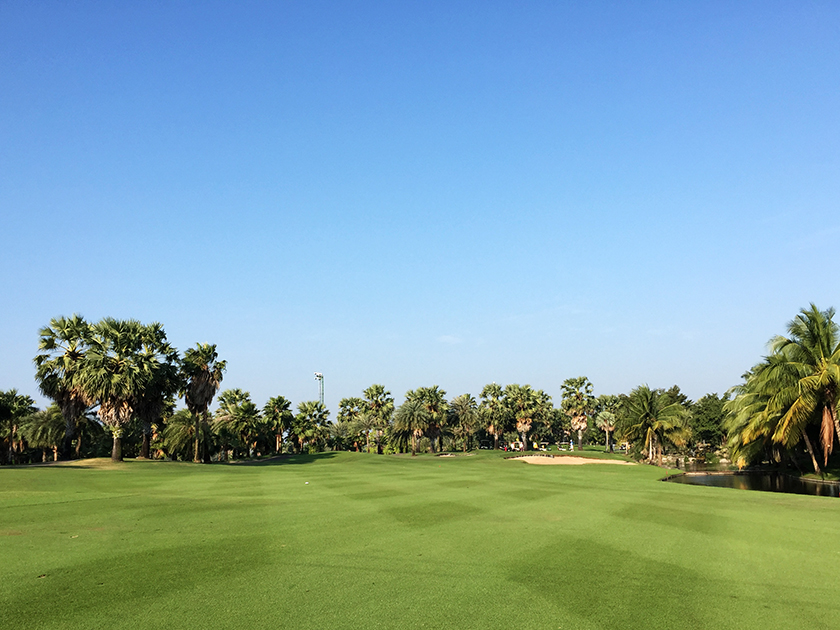 スワンゴルフ&カントリークラブ 11番のグリーン