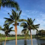 タイ・バンコク ゴルフ旅「スワンゴルフ&カントリークラブ」通算4回目にしてやっと100切り