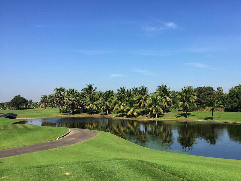 スワンゴルフ&カントリークラブ 11番の池
