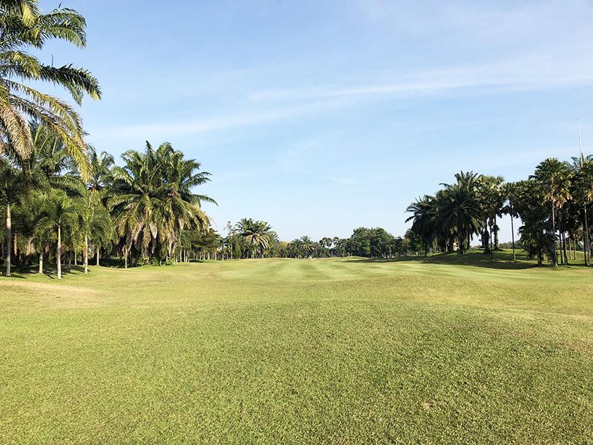 タイ・チェンマイゴルフ旅 ヤシの木で囲まれた平坦なコース