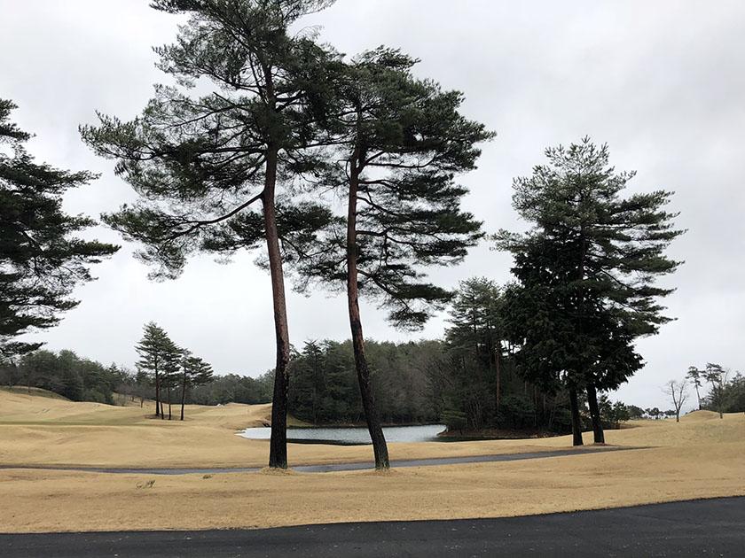 寒々とした厚い雲-千代田OGMゴルフ倶楽部