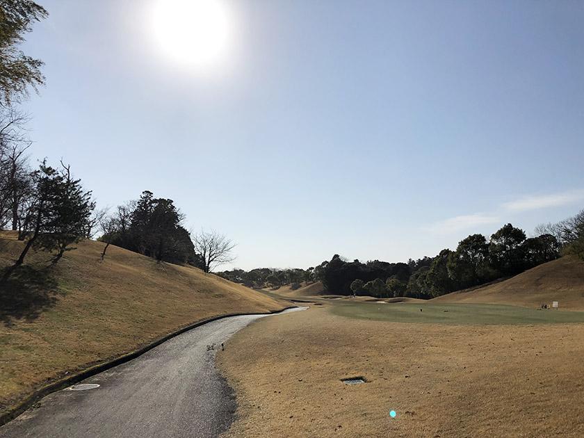 茨城セントラルゴルフクラブNEWコース 関東は暖かい