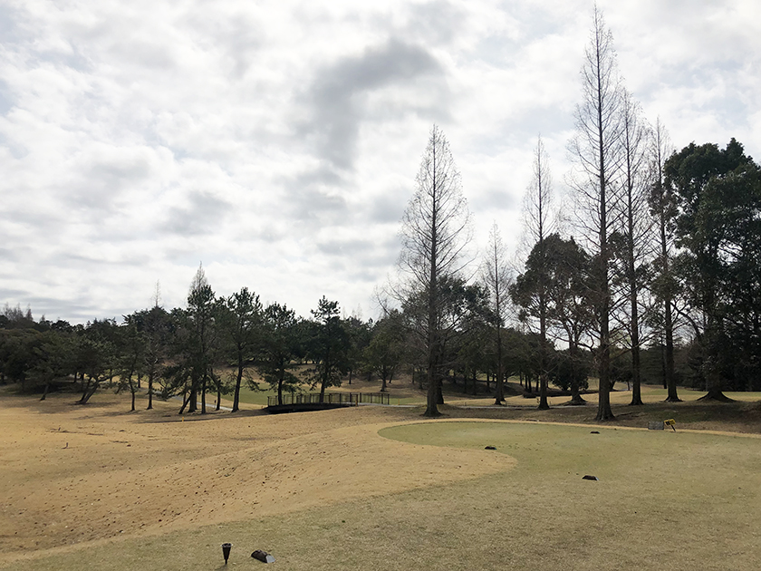 茨城セントラルゴルフクラブ西コース 薄曇りだけど暖かい