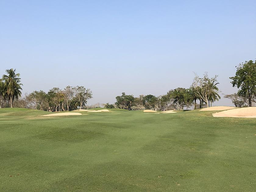 グリーンウッドゴルフリゾート 緑がキレイ